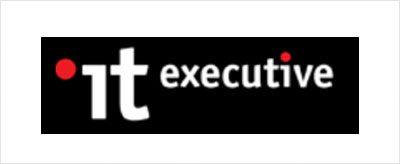 IT Executive